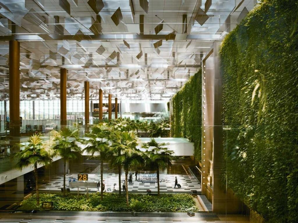 Singapore Changi Airport Green Wall