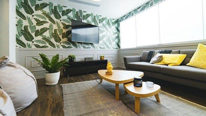 living-room-feng shui color plants-min (Demo)